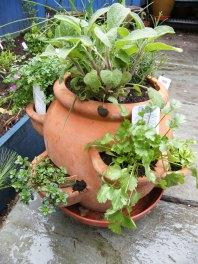 herb-pot-1