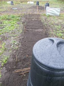 2013-10-19-3-right-hand-beds-dug