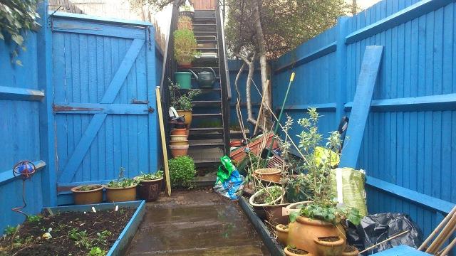 03 Rear garden